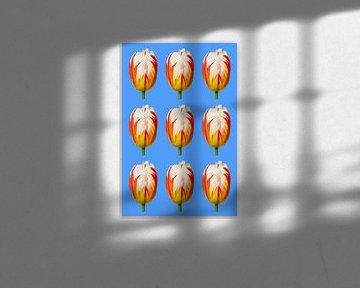 Tulpen in patroon van Studio Maria
