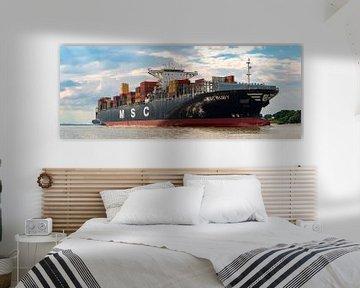 Containerreus op de Elbe van Sabine Wagner
