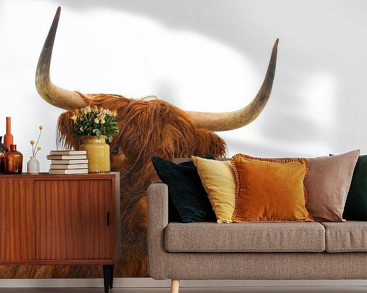 Impression: Portrait d'une vache des Highlands écossais sur Sjoerd van der Wal