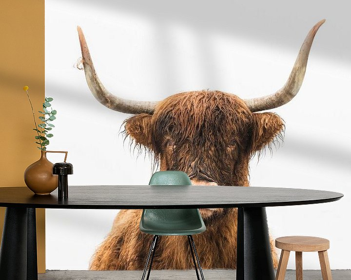 Sfeerimpressie behang: Portret van een Schotse hooglander koe van Sjoerd van der Wal