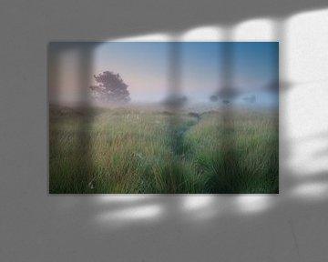 Path in the mist van Olha Rohulya