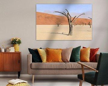 Bomen in de Namib Woestijn van Achim Prill