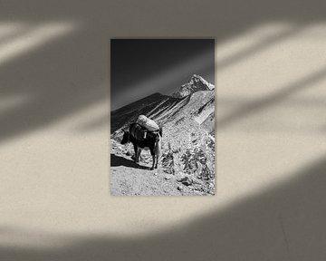 Himalaya Nepal Zwart-Wit van Ton Tolboom
