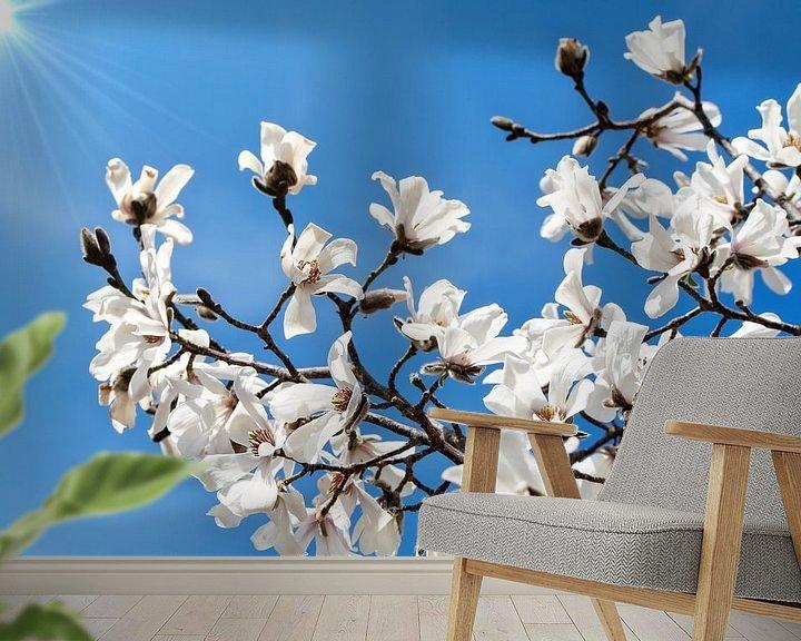 Sfeerimpressie behang: Witte bloemen van de Magnolia lentebloesem van Jessica Berendsen