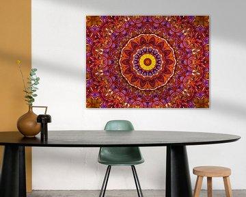 Retrospektive (Mandala in Rot) von Caroline Lichthart