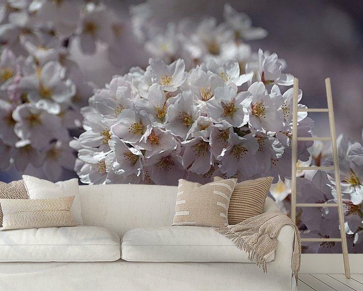Sfeerimpressie behang: Kersenbloesem in bloei van JTravel