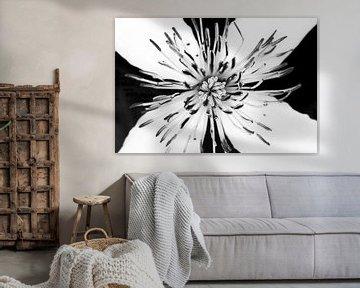 weiße Blume in schwarz und weiß von Klaartje Majoor