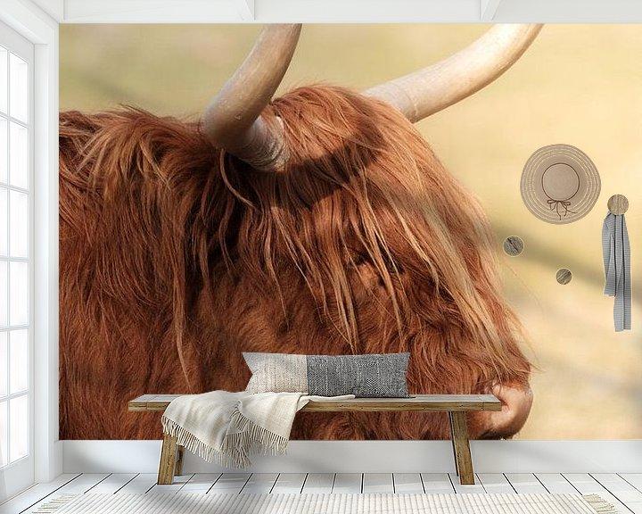 Sfeerimpressie behang: Schotse hooglander kop van Melissa Peltenburg