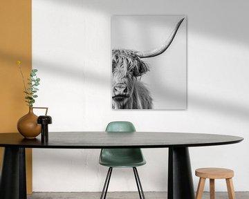 Portret van een Schotse Hooglander in zwart-wit van Ans Bastiaanssen