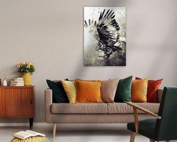 Eagle van Mateo