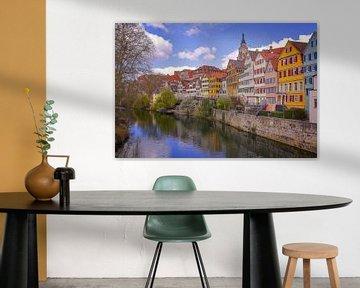 Tübingen am Neckar von Patrick Lohmüller