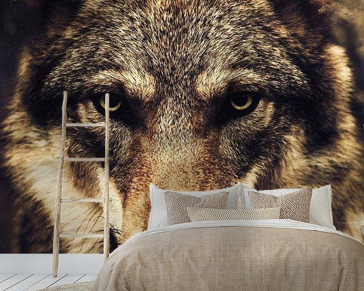 Beispiel fototapete: Wolf von Mateo