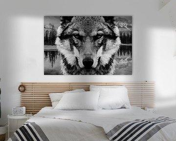 Wolf Wald von Mateo