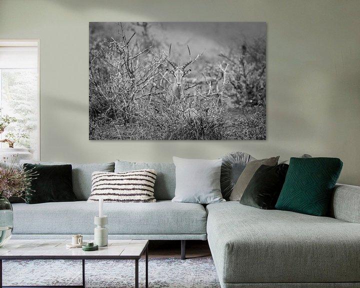 Sfeerimpressie: Antilope van Visueelconcept