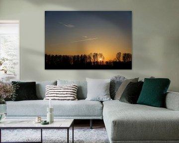 Zonsondergang achter de bomen in Het Waterrijk. van Jurjen Jan Snikkenburg