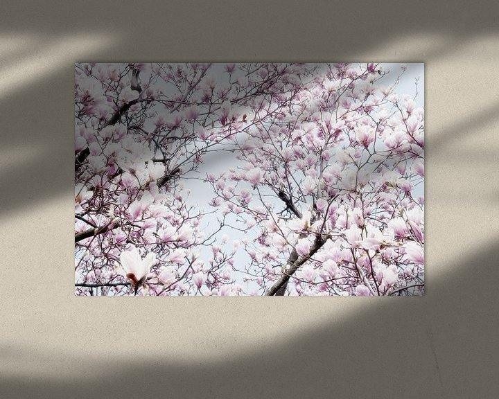 Sfeerimpressie: Magnoliabloesem lentebloesem I van Jessica Berendsen