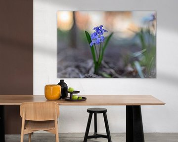 Blumen Teil 86 von Tania Perneel