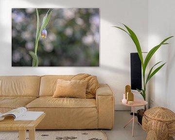 Blumen Teil 94 von Tania Perneel