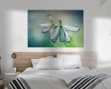 Alte Tulpen von Piotr Aleksander Nowak
