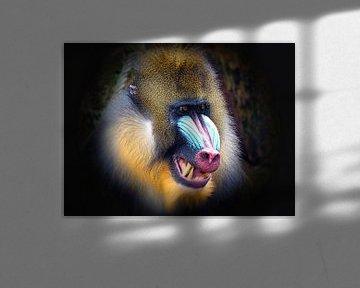 Portrait met lange tanden van Eduard Lamping