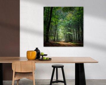 Der magische Wald von Speulder von Rob Sprenger