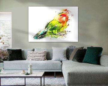 Lovebird Vogel Aquarell Kunst #Lovebird von JBJart Justyna Jaszke