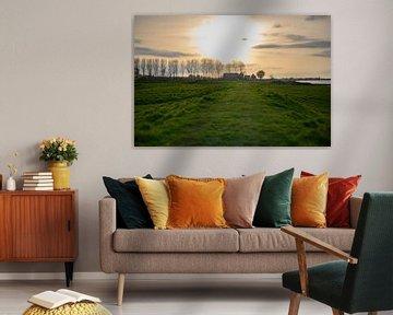 grasdijk in Opheusden van Tania Perneel