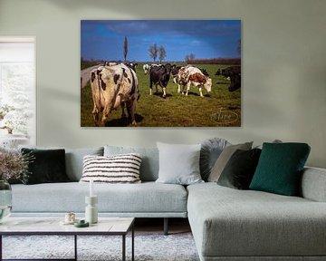 De rust is terug, de koeien zijn in het weiland van Tina Linssen