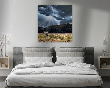 Ruhe vor dem Sturm Blaarkop-Kuh von Fotojeanique .