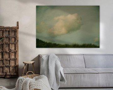 eenzame wolk van Ellen Snoek