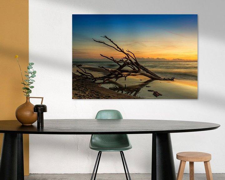 Sfeerimpressie: Oude boomstam op strand in zonsondergang van Frank Herrmann