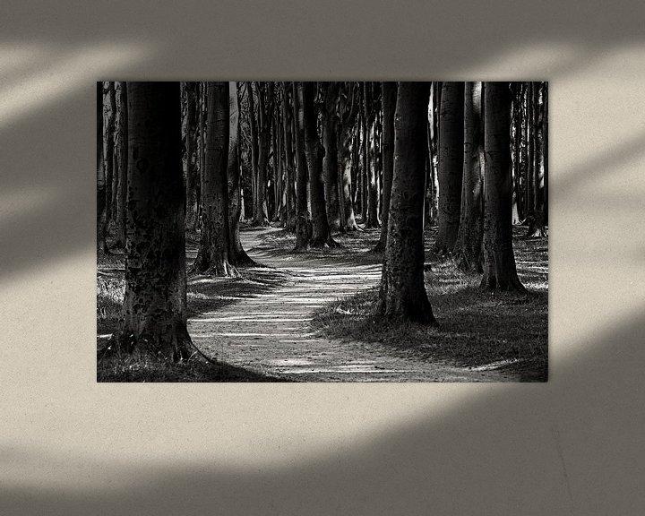 Sfeerimpressie: Forest van Frank Herrmann