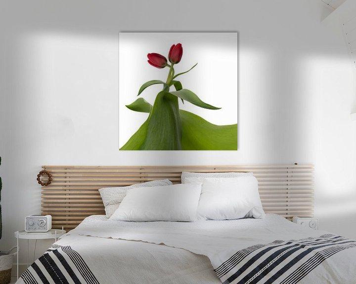 Sfeerimpressie: Tulpen: liefde op het eerste gezicht van Klaartje Majoor