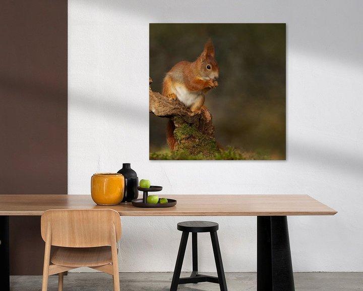Sfeerimpressie: eekhoorn van Ina Hendriks-Schaafsma
