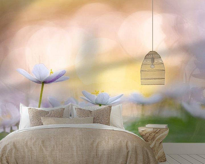 Sfeerimpressie behang: Bosanemonen in kleurrijk licht van Ton van den Boogaard