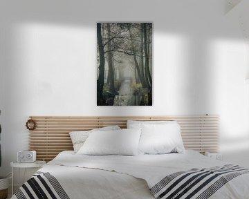 Mystic morning van Dirk van Egmond