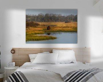 Natur pur von Dirk van Egmond