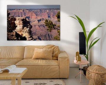 Grand Canyon USA van Peter Schickert