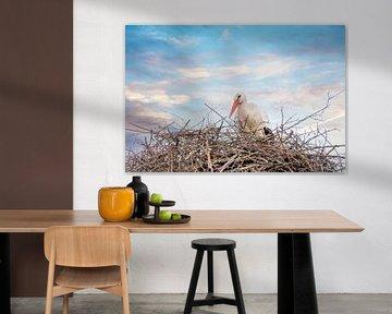 Een ooievaar staat in het nest, dramatische bauw, wit en oranje lucht in de achtergrond. Wenskaart . van Gea Veenstra