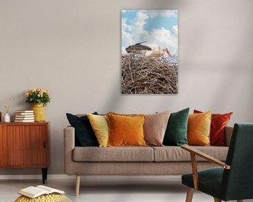 Een ooievaar staat in het nest, blauwe lucht met witte wolken in de achtergrond.Wenskaart van Gea Veenstra
