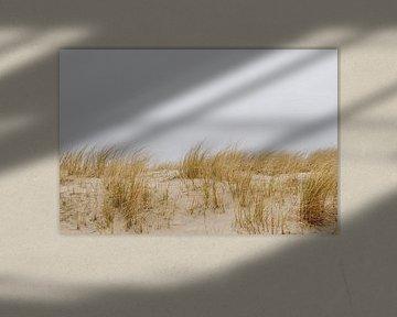 Helleborine am Strand von Texel, in der Nähe des Bootes nach Vlieland | Expedition Hinterhof | Kunst von Evelien Lodewijks
