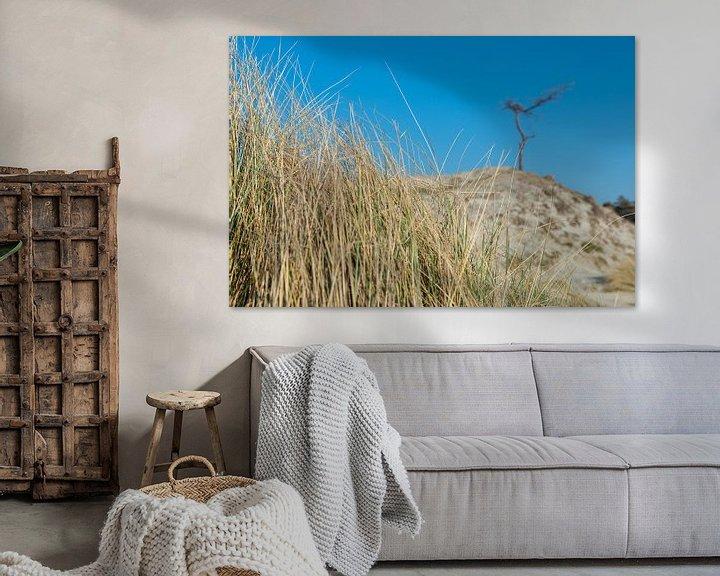 Sfeerimpressie: Gras , duin, boom en blauwe lucht van Jaco Verheul