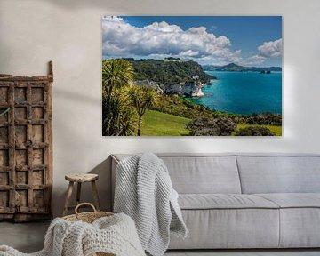 Côte près de Hahei, Nouvelle-Zélande sur Christian Müringer