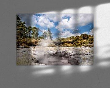 Wai-o-Tapu Geothermal Area bij Rotorua, Nieuw Zeeland van Christian Müringer