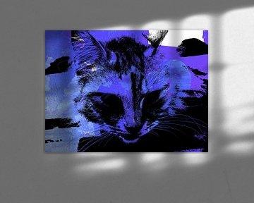 Kattenkunst - Kelly 1
