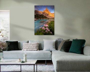 Het meer van Sorapis van Sven Broeckx