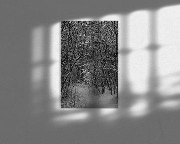 Winter in Oostvoorne von Willem Scherpenisse