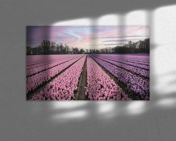 Felder mit rosa und lila Blumen von Sanne Dost