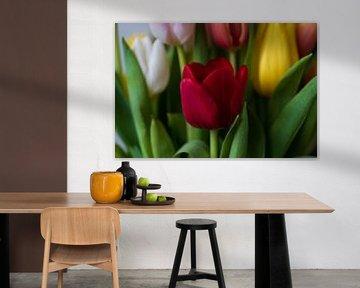Tulpen, rood, geel, wit en roze. van Ingrid van Wolferen