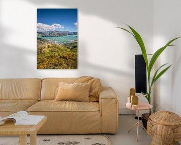 Zicht op Lyttelton vanaf de Port Hills, Nieuw Zeeland van Christian Müringer